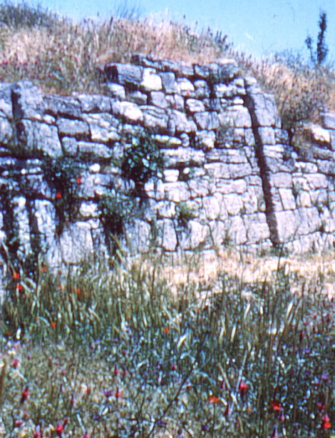 Walls of Troy.jpg