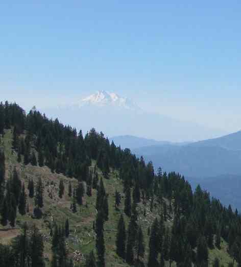 Mt. Shasta.jpg