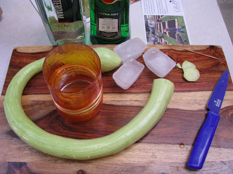 ArmenianCucumberMartini1.jpg