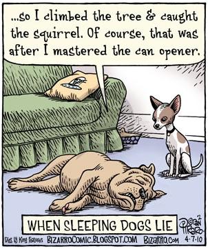 Bizarro,onNosleepingdogs.jpg