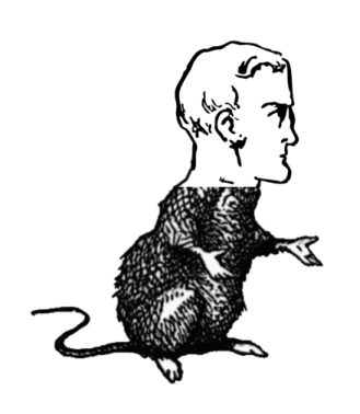 mouse with human headSM.jpg