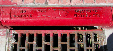 Reno fish drain sign.jpg
