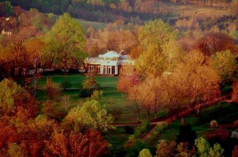Trees in fall color, surrounding Monticello